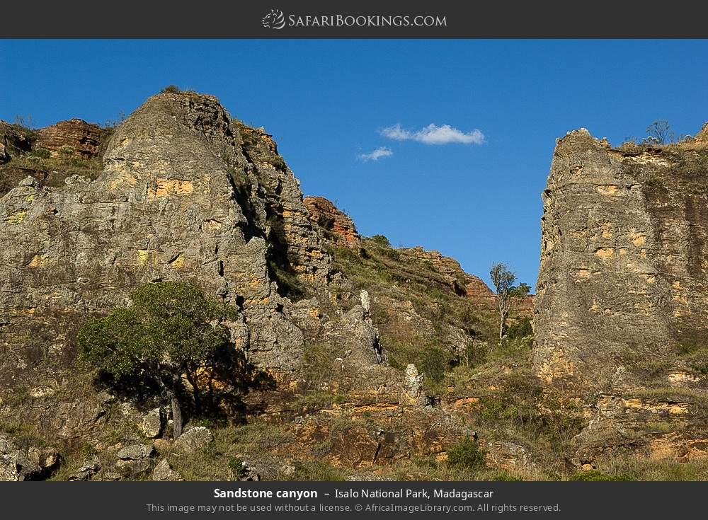 Sandstone canyon in Isalo National Park, Madagascar
