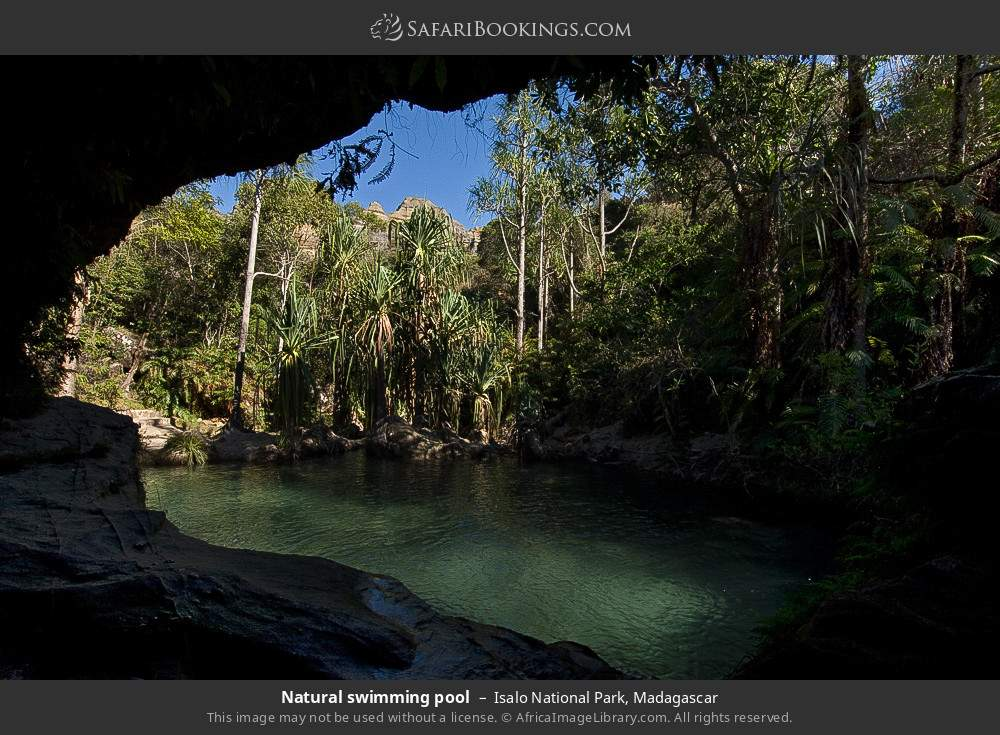 Natural swimming pool in Isalo National Park, Madagascar
