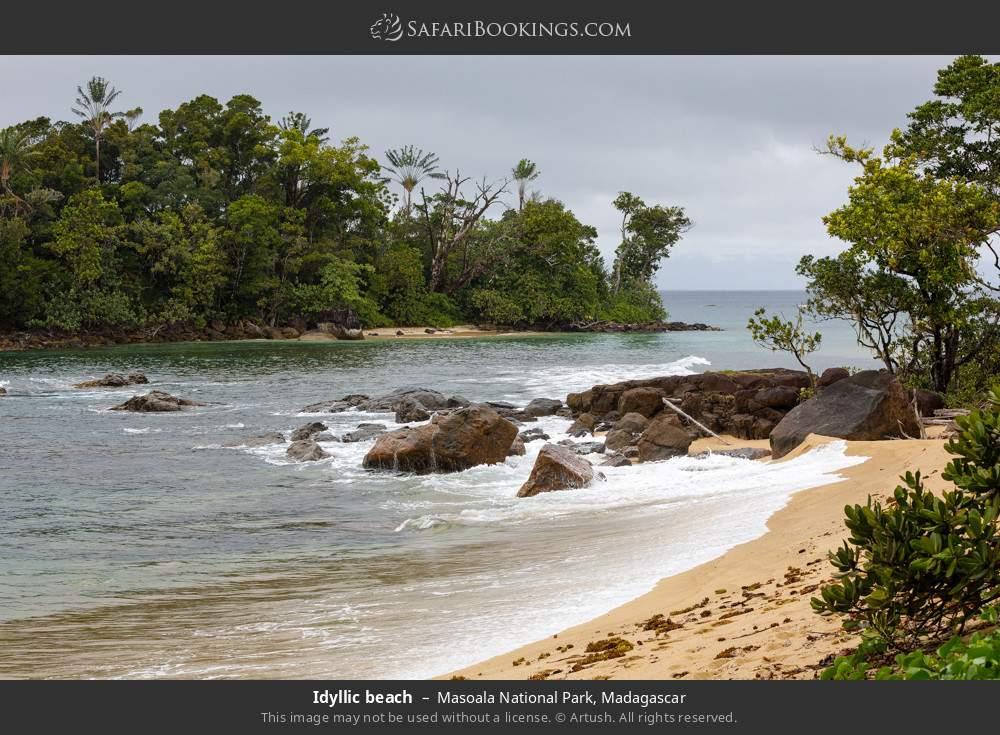Idyllic beach in Masoala National Park, Madagascar