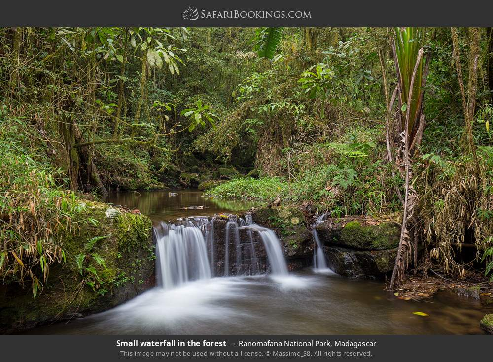 Small waterfall in the forest in Ranomafana National Park, Madagascar