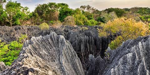 10-Day Madagascar Authentic Adventure