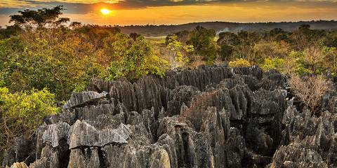 11-Day Classic Madagascar Tour