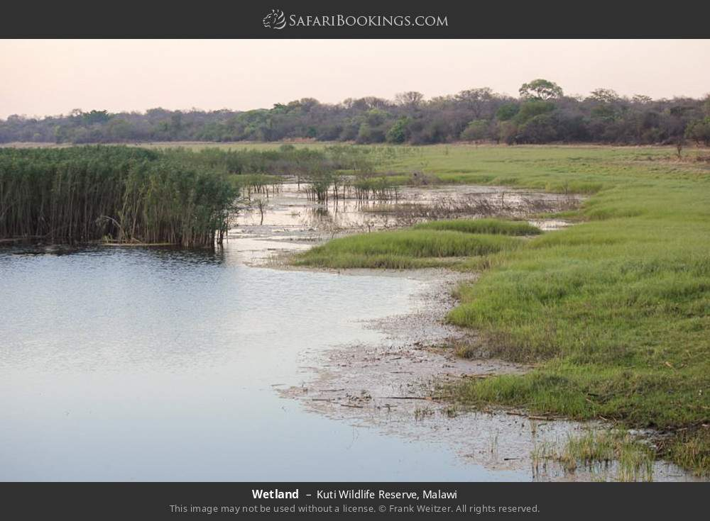 Wetland in Kuti Wildlife Reserve, Malawi