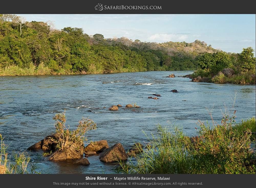 Shire River in Majete Wildlife Reserve, Malawi