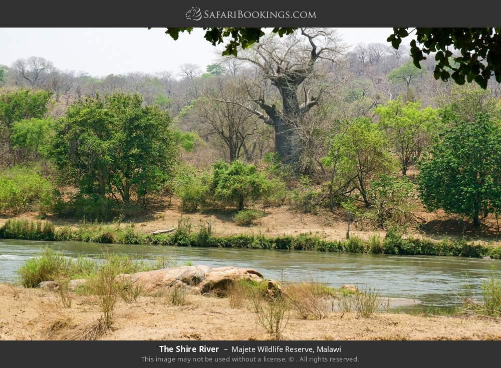 The Shire River in Majete Wildlife Reserve, Malawi