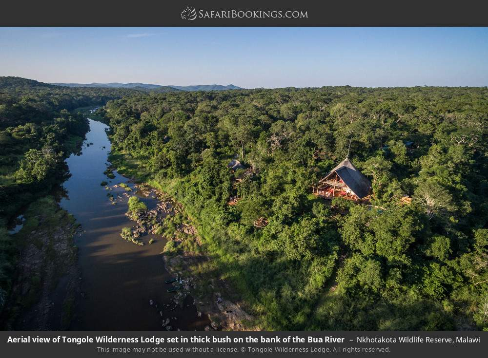Aerial view of Tongole Wilderness Lodge set in thick bush on the bank of the Bua River in Nkhotakota Wildlife Reserve, Malawi