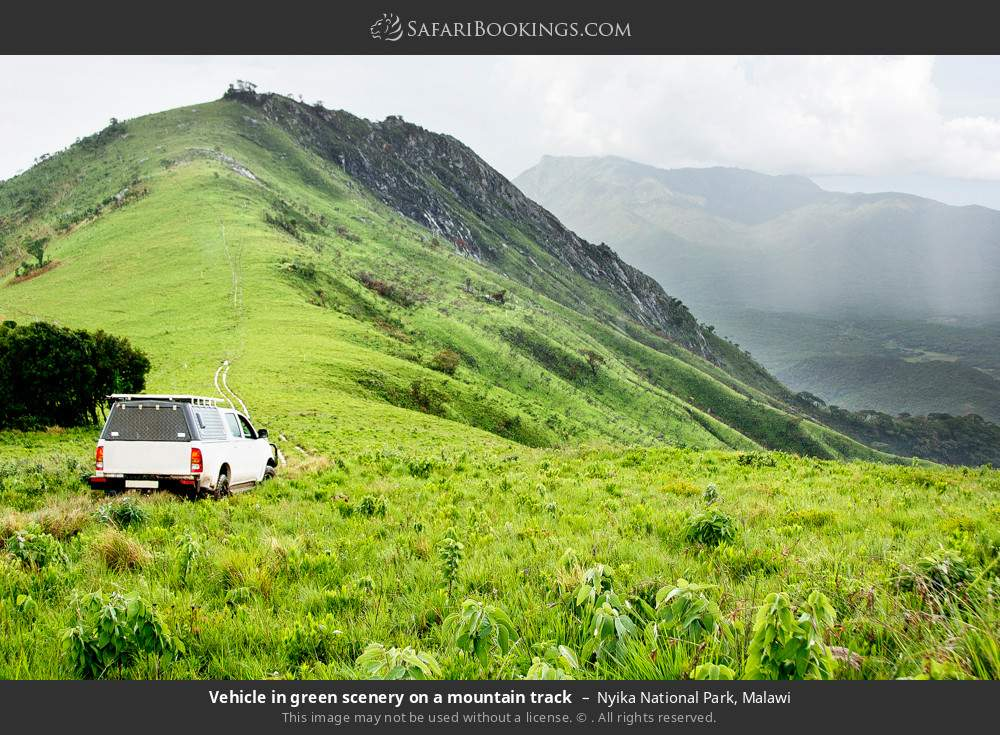 Vehicle in green scenery on a mountain track in Nyika National Park, Malawi