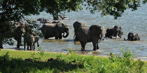 5-Day Best Taste of Malawi Safari and Scuba Diving