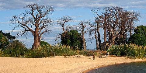 4-Day Private Tour 2 Base on People Northern Tanzania