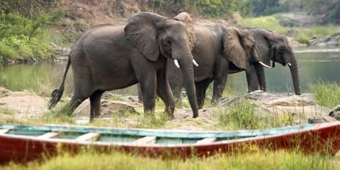 7-Day Northern Malawi Safari