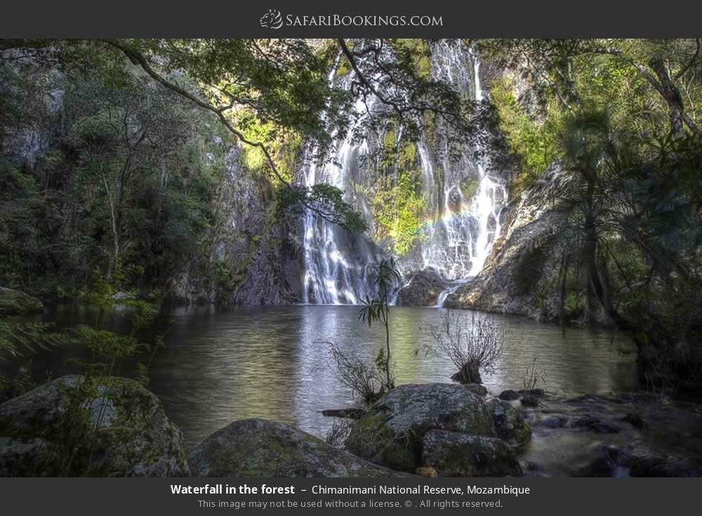 Waterfall in the forest in Chimanimani National Reserve, Mozambique
