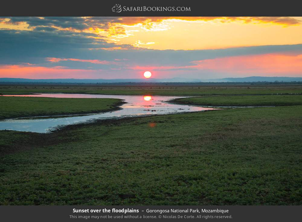 Sunset over the floodplains in Gorongosa National Park, Mozambique
