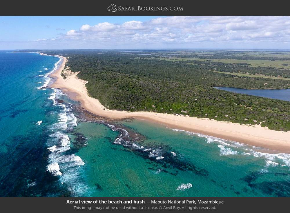 Aerial view of the beach and bush in Maputo Special Reserve, Mozambique