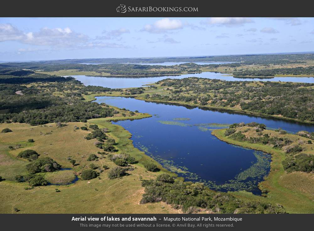 Aerial view of lakes and savannah in Maputo Special Reserve, Mozambique