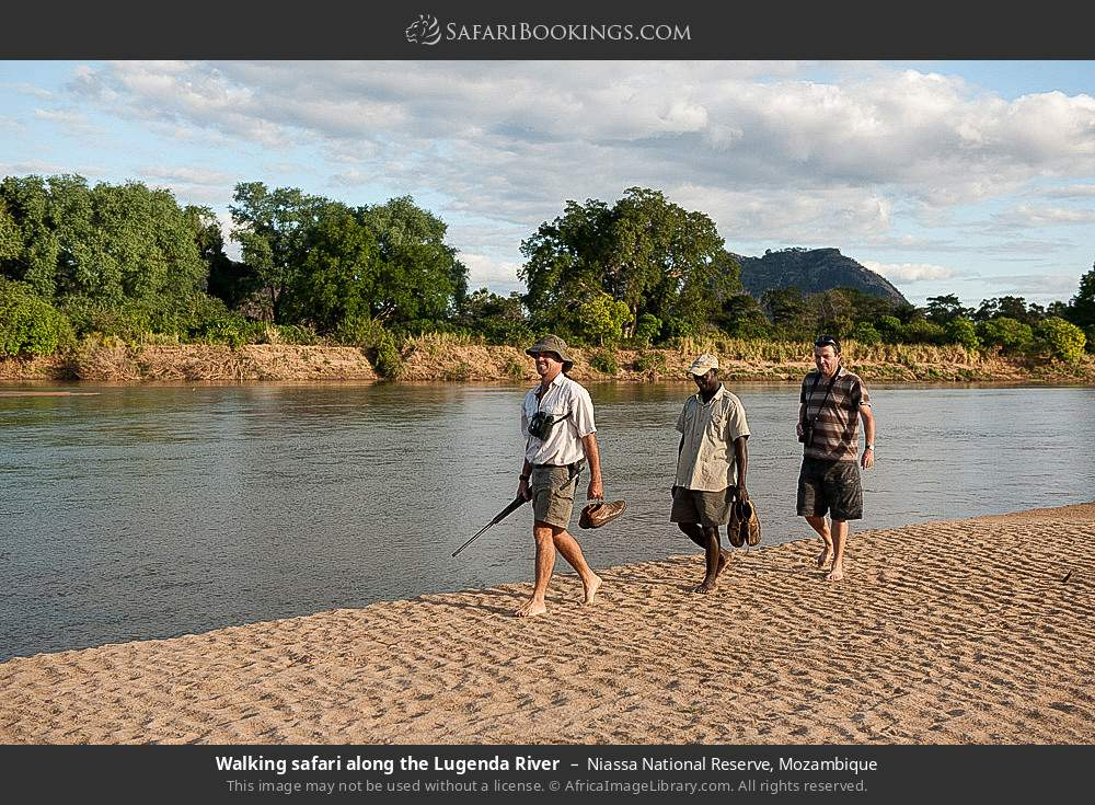 Game walk along the Lugenda river in Niassa National Reserve, Mozambique