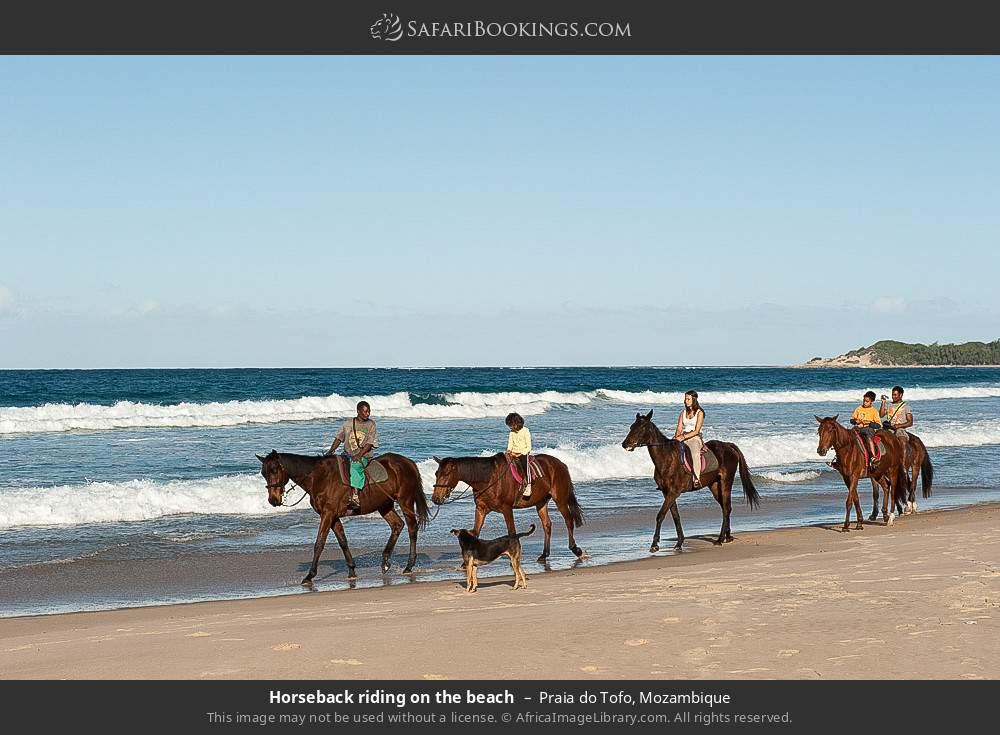 Horse riding on the beach in Praia do Tofo, Mozambique