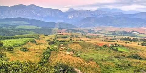 4-Day Budget Safari to Tarangire, Serengeti & Ngorongoro