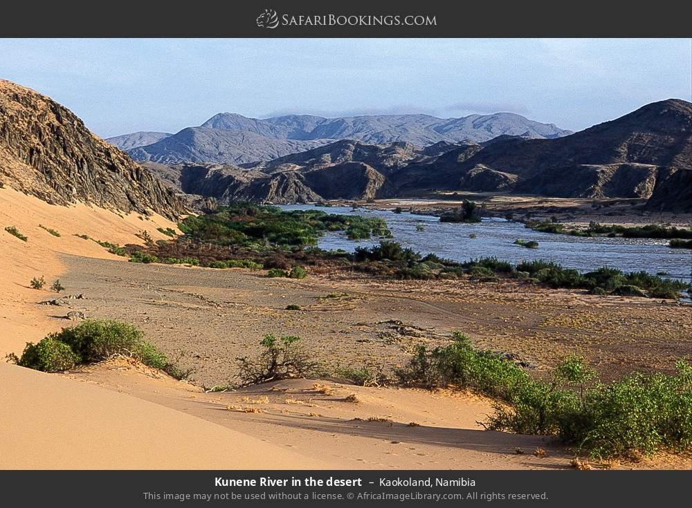 Kunene river in the desert in Kaokoland, Namibia