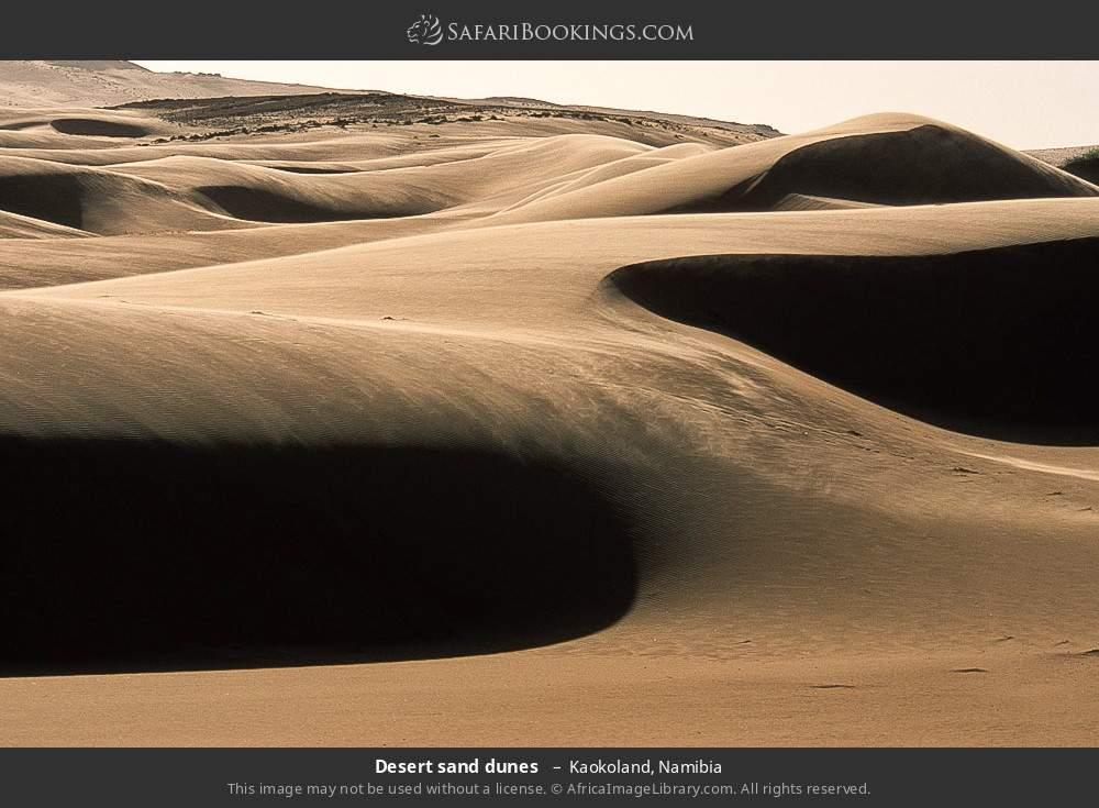Desert sand dunes  in Kaokoland, Namibia