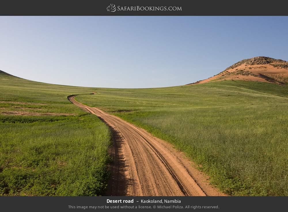 Desert road in Kaokoland, Namibia