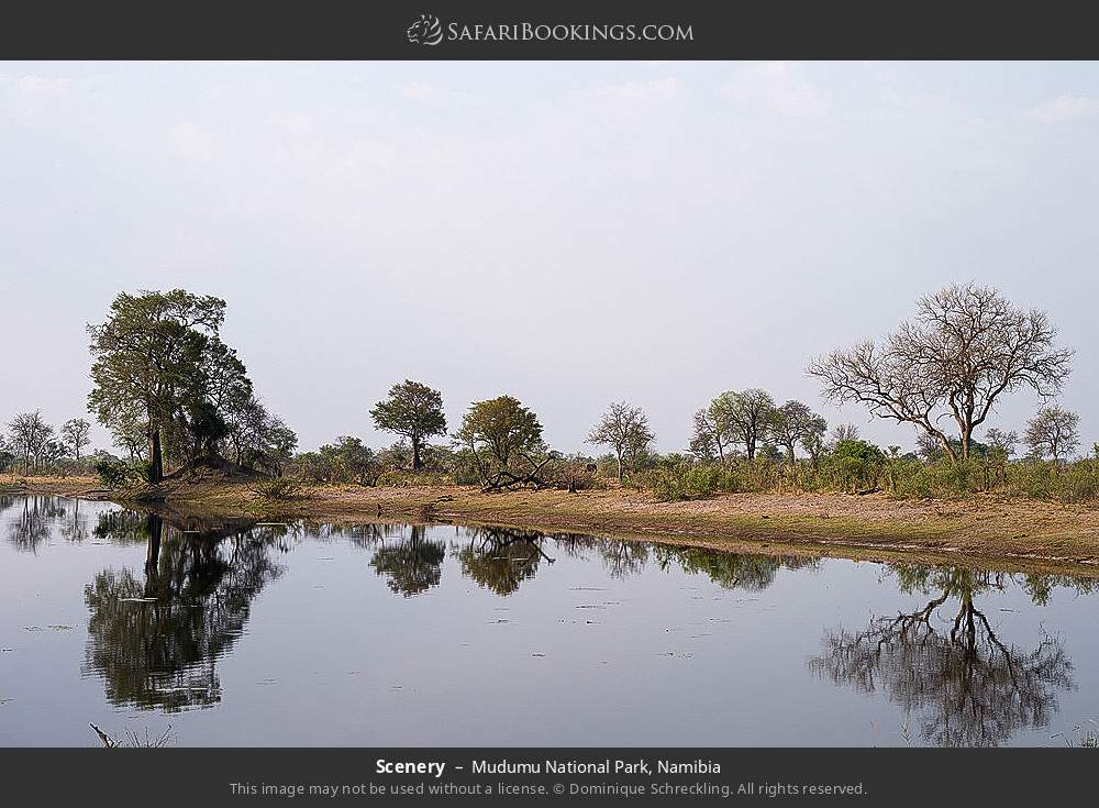 Scenery in Mudumu National Park, Namibia