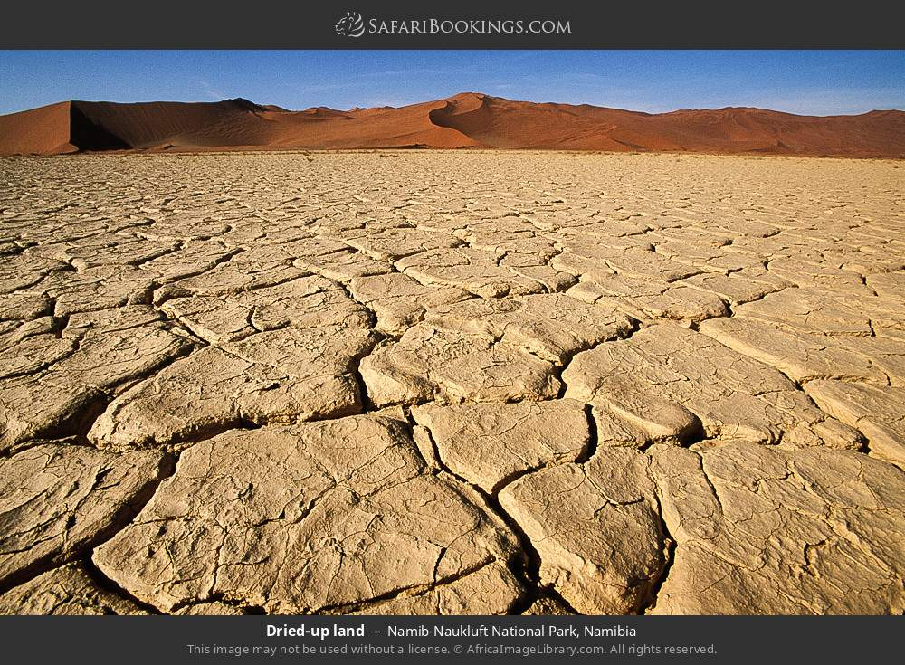 Dried up land in Namib-Naukluft National Park, Namibia