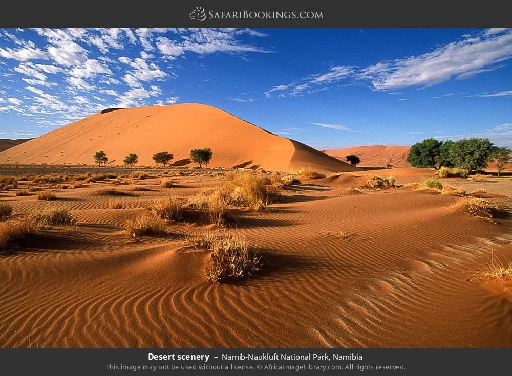 Desert scenery in Namib-Naukluft National Park, Namibia