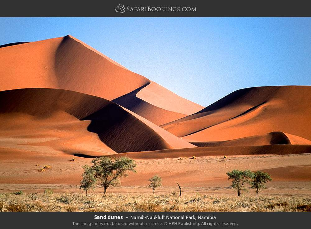 Sand dunes in Namib-Naukluft National Park, Namibia