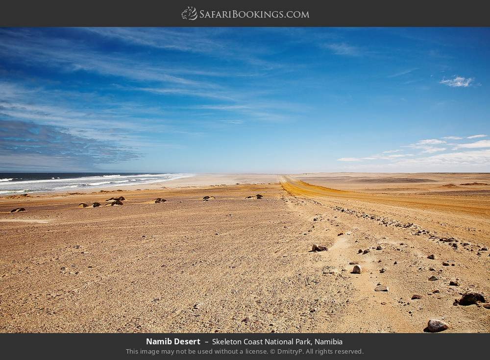 Namib desert in Skeleton Coast National Park, Namibia