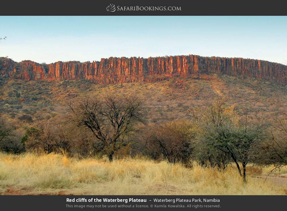 Red cliffs of the Waterberg Plateau in Waterberg Plateau Park, Namibia