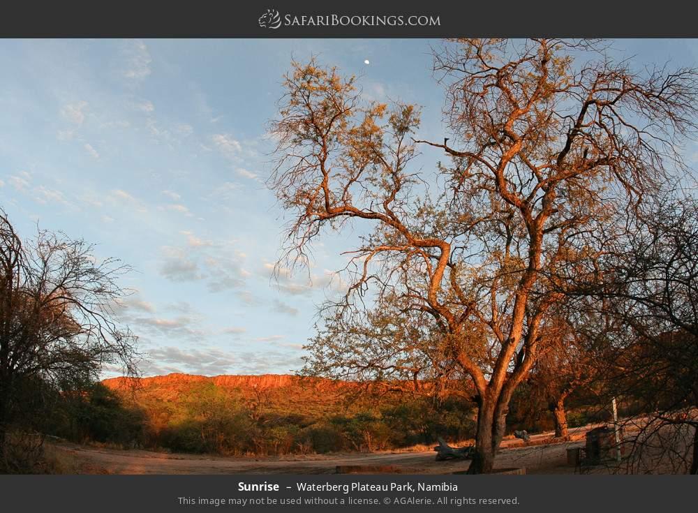 Sunrise in Waterberg Plateau Park, Namibia