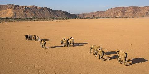 15-Day Namibia, Chobe and Victoria Falls