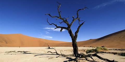 3-Day Namib Desert Sossusvlei Accommodated Tour