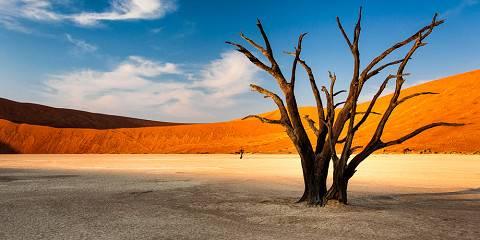 Ultimate Namibia Safari - Standard
