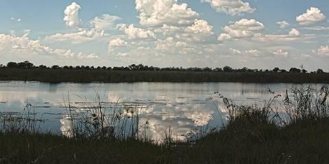 7-Day Botswana Highlights Safari
