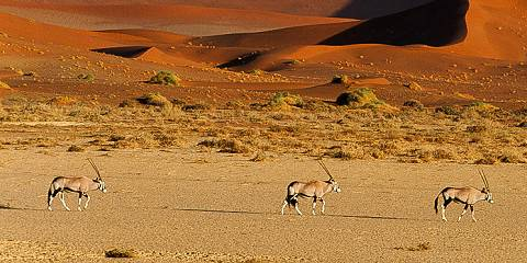 South Africa and Namibia Self Drive Adventure