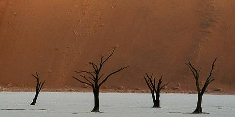 3-Day Safari to Sossusvlei, Namibia