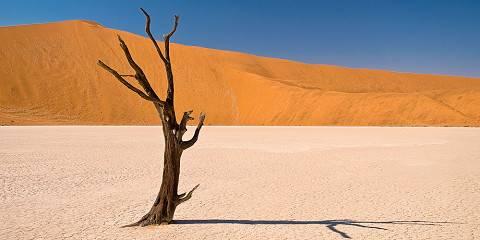 10-Day Safari2Go Namibia Highlights Safari