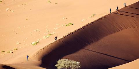 13-Day Highlights of Namibia Tour