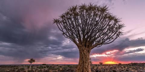 14-Day Namibia Adventure