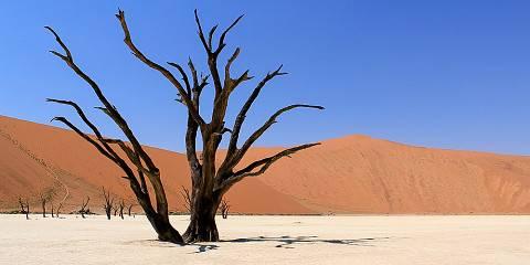 8-Day Sossusvlei, Swakop, Twyfelfontein & Etosha Lodging