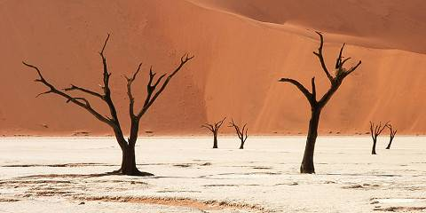 13-Day Namibian Discovery (with Optional Southern Add-on)