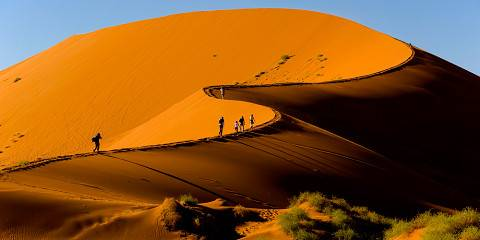 7-Day Private Guided Namibia Fly in Safari