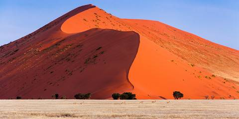 5-Day Namibia Desert Safari