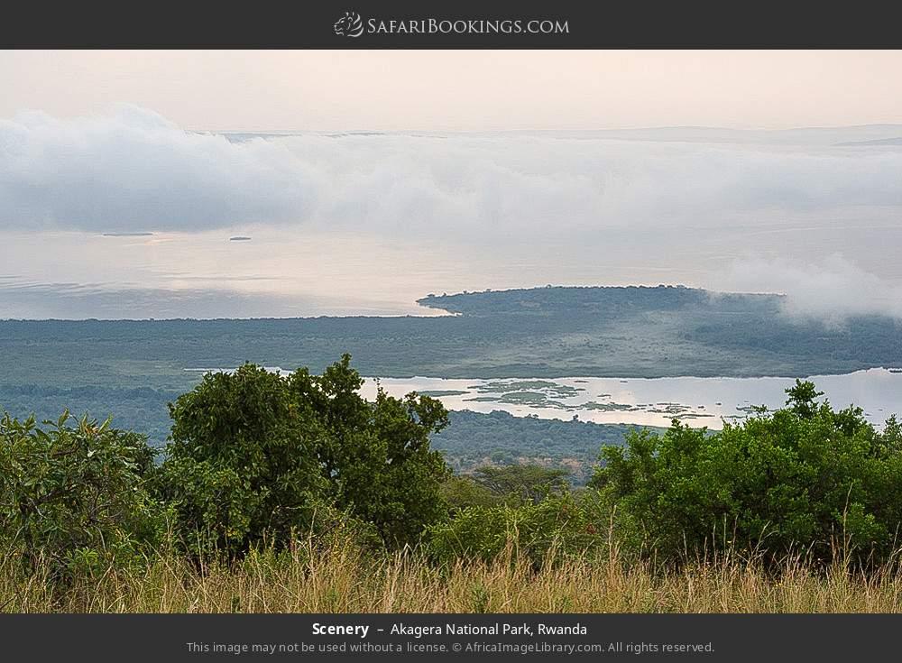 Scenery in Akagera National Park, Rwanda