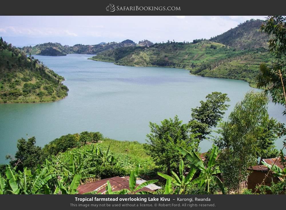 Tropical farmstead overlooking Lake Kivu in Karongi, Rwanda