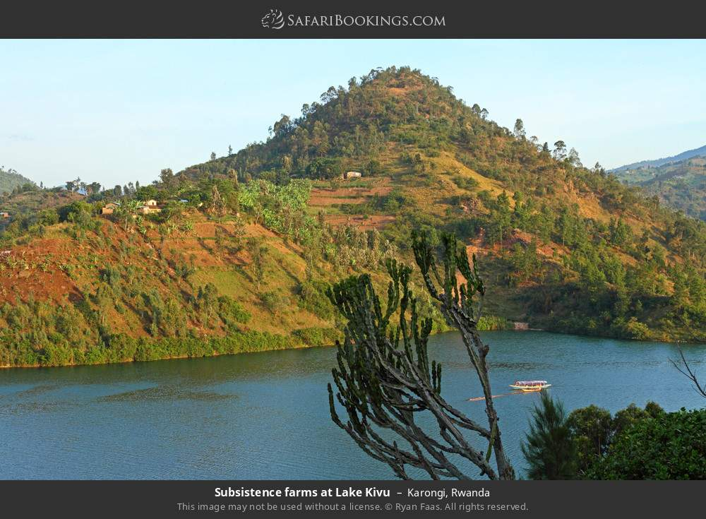 Subsistence farms at Lake Kivu in Karongi, Rwanda