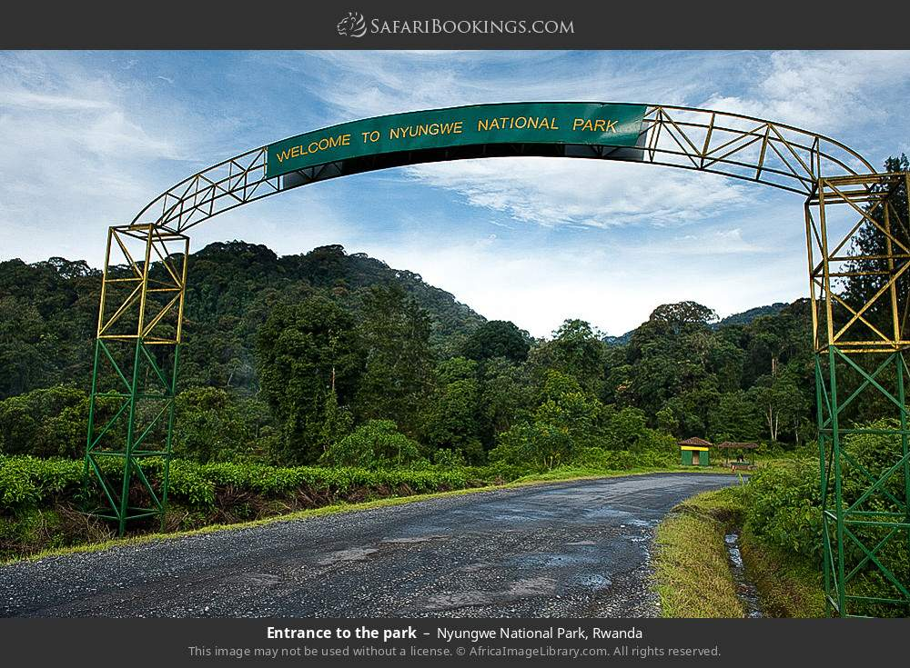Entrance to the park in Nyungwe Forest National Park, Rwanda