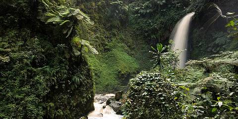 12-Day Rwanda-Uganda Wildlife Safari and Gorilla Trekking