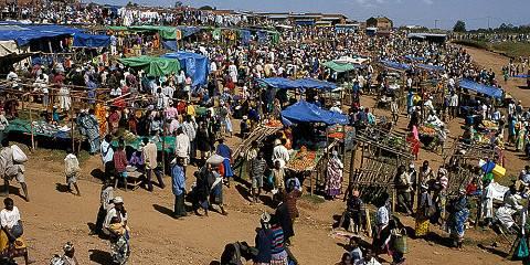 6-Day Arusha Park, Ngorongoro, Serengeti, Manyara